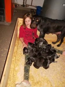 Leonie unsere Hundesitterin